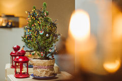 圣诞节小的结构树 库存图片