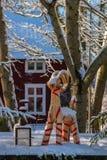 圣诞节山羊在庭院里 免版税库存照片