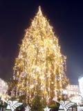圣诞节巨人结构树 免版税库存照片