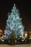 圣诞节巨人结构树 图库摄影