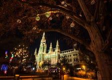 圣诞节市场在Rathausplatz的,奥地利,欧洲维也纳香港大会堂 免版税库存照片