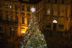 圣诞节布拉格结构树 图库摄影