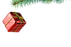 圣诞节常青云杉的结构树 库存图片