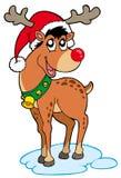 圣诞节帽子驯鹿 库存照片