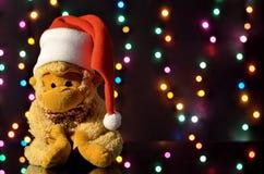 圣诞节帽子猴子 与ga的圣诞节装饰 免版税库存照片