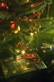 圣诞节庆祝 免版税库存图片