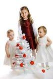 圣诞节开玩笑少许结构树 免版税库存图片