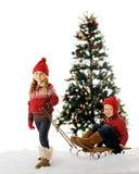 圣诞节开玩笑雪撬 库存图片