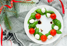 圣诞节开胃菜-圣诞节花圈caprese沙拉 免版税库存图片