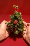 圣诞节微小的结构树 免版税库存照片