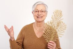 圣诞节心情的老妇人 免版税库存图片