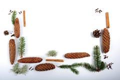 圣诞节成份 免版税库存照片