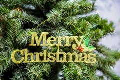 圣诞节我的投资组合结构树向量版本 玛丽圣诞节 免版税库存图片