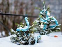 圣诞节我的投资组合结构树向量版本 免版税库存照片