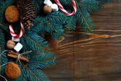 圣诞节或新年背景用曲奇饼、香料、桂香、坚果和杉树在黑暗的木背景分支 免版税图库摄影