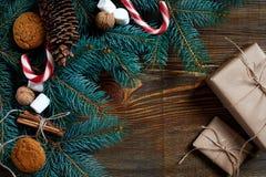 圣诞节或新年背景用曲奇饼、香料、桂香、坚果和杉树在黑暗的木背景分支 免版税库存图片