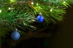 圣诞节接近的深度域浅结构树 库存照片