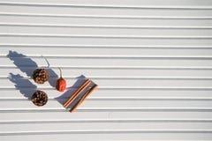 圣诞节摄影图象xmas食物加香料肉桂条在被采取的白色木背景的杉木锥体在阳光下 免版税图库摄影