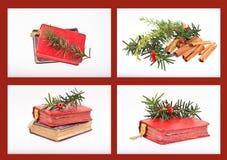 圣诞节收集 免版税库存照片
