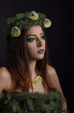 圣诞节时装模特儿妇女 免版税图库摄影