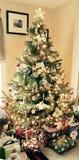 圣诞节时间!!! 免版税库存图片