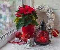 圣诞节星(大戟属pulcherrima)在窗口和基督 库存照片