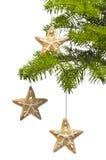 圣诞节曲奇饼形状星形结构树 免版税库存照片