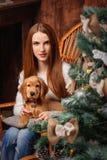 圣诞节有西班牙猎狗的画象女孩 免版税库存照片