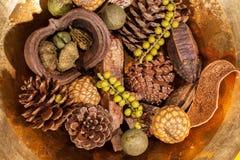 圣诞节杂烩桌装饰 传统xmas pinecone 库存照片