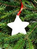圣诞节杉树与白色的分支和圣诞节装饰 免版税图库摄影