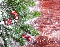 圣诞节杉树分支 免版税库存图片