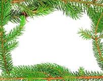 圣诞节杉树框架设计元素 免版税库存图片