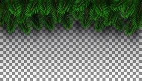 圣诞节杉树边界 库存照片