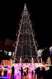 圣诞节极大的结构树 免版税库存图片