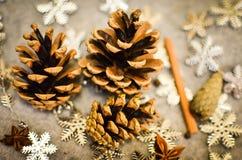 圣诞节构成用蜜桔,杉木锥体,束Cinnamonand雪花-装饰 免版税库存照片