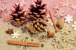 圣诞节构成用蜜桔,杉木锥体,束Cinnamonand雪花-装饰 库存照片