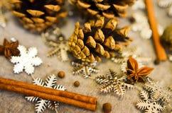 圣诞节构成用蜜桔,杉木锥体,束Cinnamonand雪花-装饰 免版税库存图片