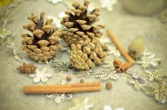 圣诞节构成用蜜桔,杉木锥体,束Cinnamonand雪花-装饰 库存图片