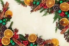 圣诞节果子和香料边界 图库摄影