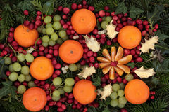 圣诞节果子背景 免版税库存图片