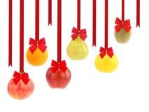 圣诞节果子 免版税库存图片