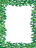 圣诞节框架霍莉 免版税图库摄影