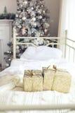 圣诞节森林上了凸边早晨多雪的线索宽冬天 库存图片
