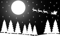 圣诞节森林晚上冬天 库存图片