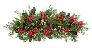 圣诞节植物群和动物区系 免版税库存图片