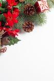 圣诞节植物群角落边界 库存图片