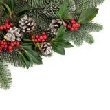 圣诞节植物群 免版税库存图片