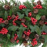 圣诞节植物群 免版税库存照片
