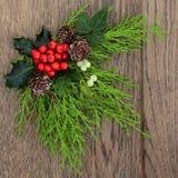 圣诞节植物群 库存照片