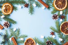 圣诞节概念的装饰 在蓝色淡色背景的食物桔子胡说的香料杉木锥体圣诞树与拷贝空间 库存图片